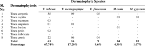 Activity of Various Essential Oils Against Clinical Dermatophytes of Microsporum and Trichophyton